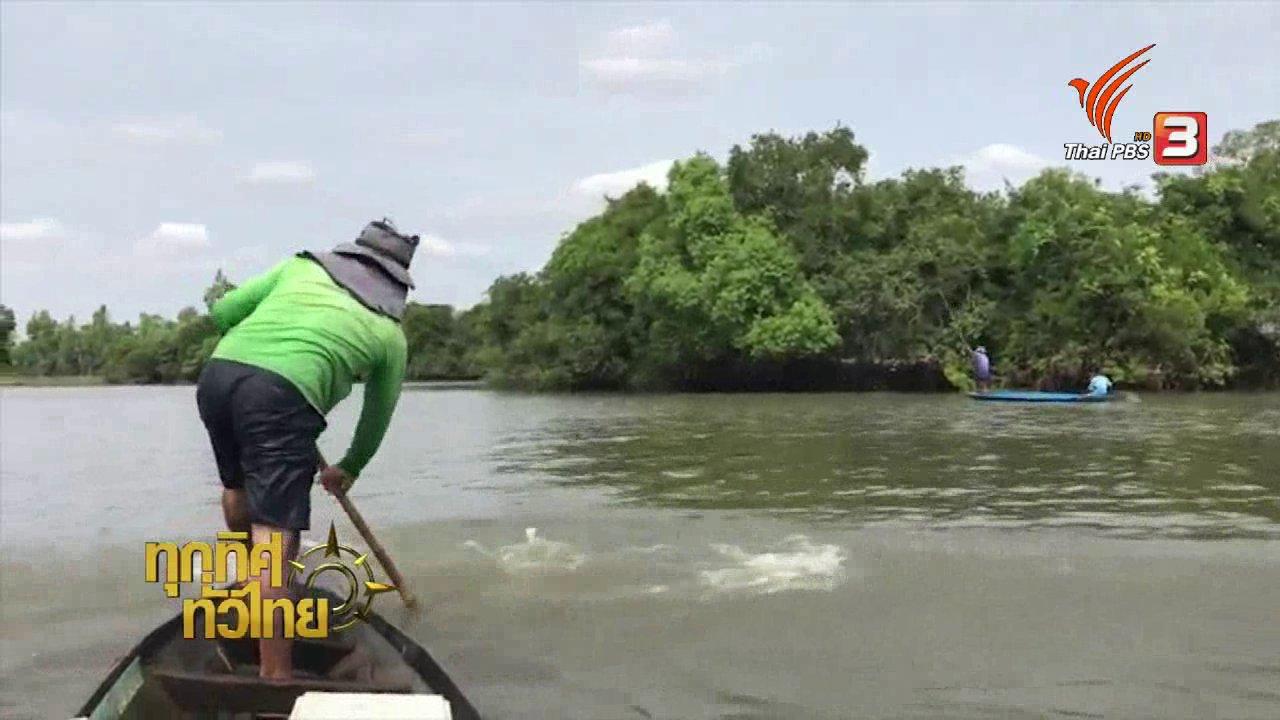 ทุกทิศทั่วไทย - วิถีทั่วไทย : วิธีการหาปลาด้วยไม้ตีมอง