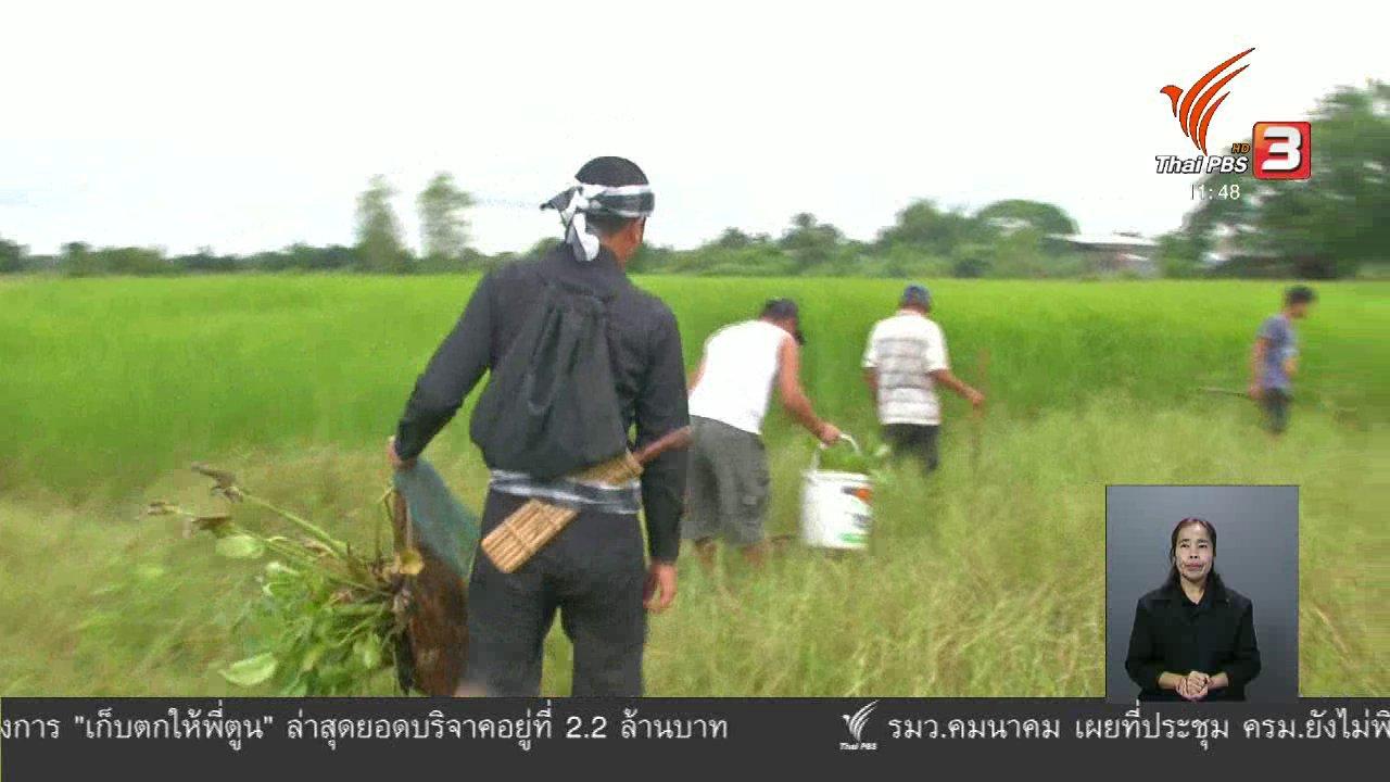 จับตาสถานการณ์ - ตะลุยทั่วไทย : หลุมดักปลา