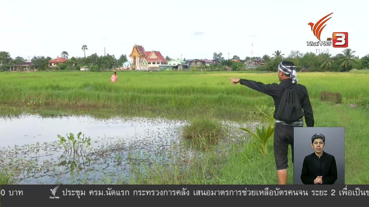 จับตาสถานการณ์ - ตะลุยทั่วไทย : ลาบมะขามป้อม