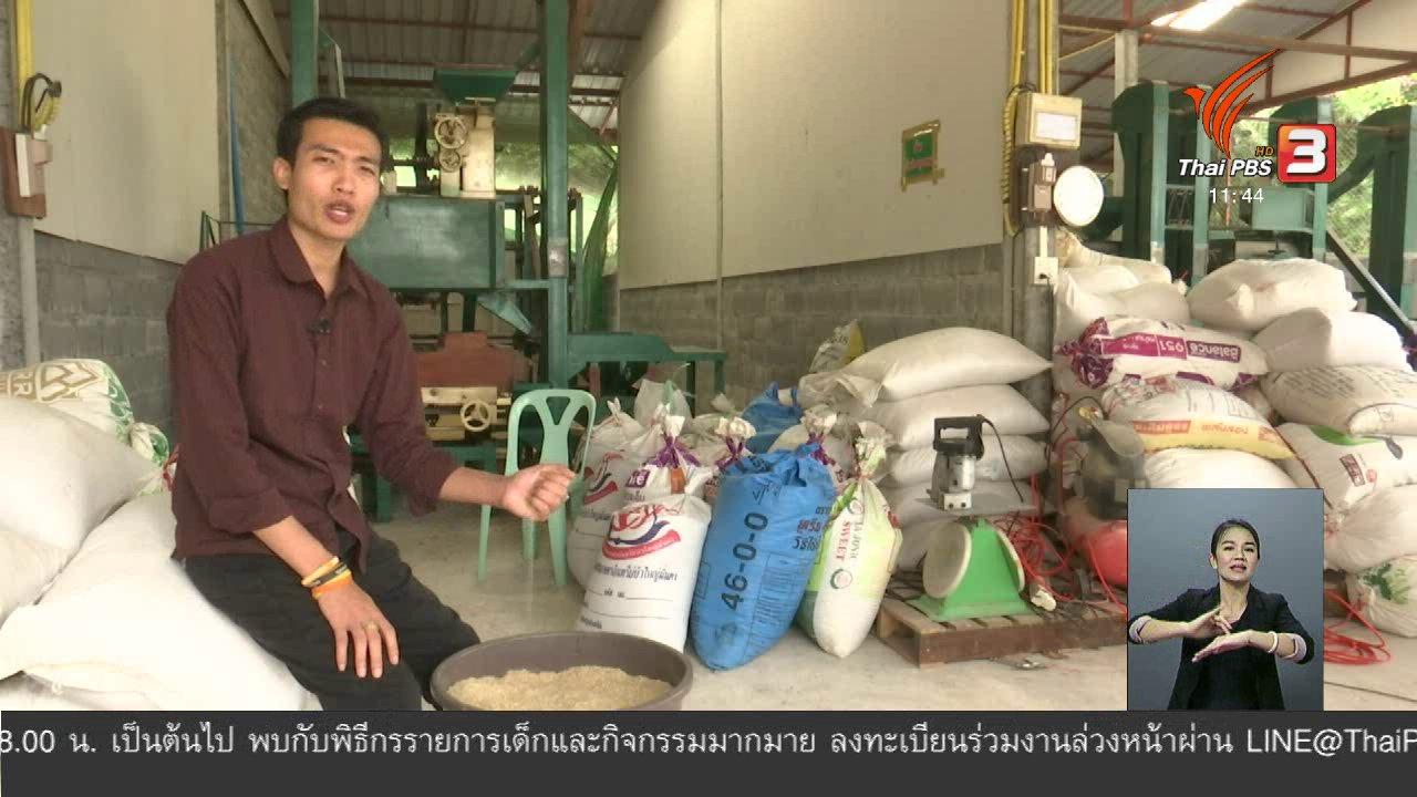 จับตาสถานการณ์ - ตะลุยทั่วไทย : ข้าวอินทรีย์ส่งออก