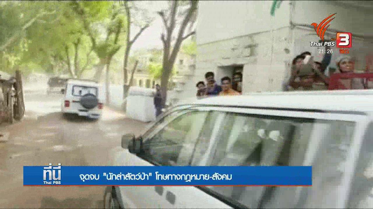 """ที่นี่ Thai PBS - จุดจบ """"นักล่าสัตว์ป่า"""" โทษทางกฎหมาย-สังคม"""