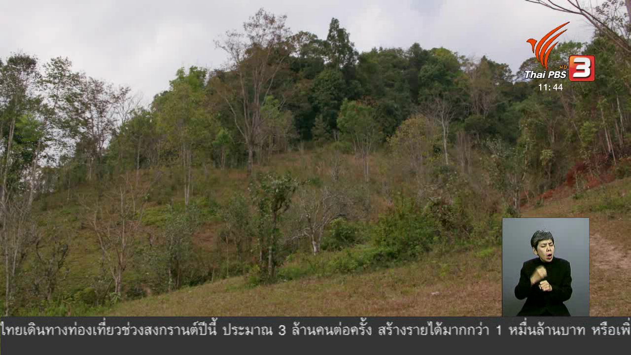 จับตาสถานการณ์ - ตะลุยทั่วไทย : เมี่ยงใบชา