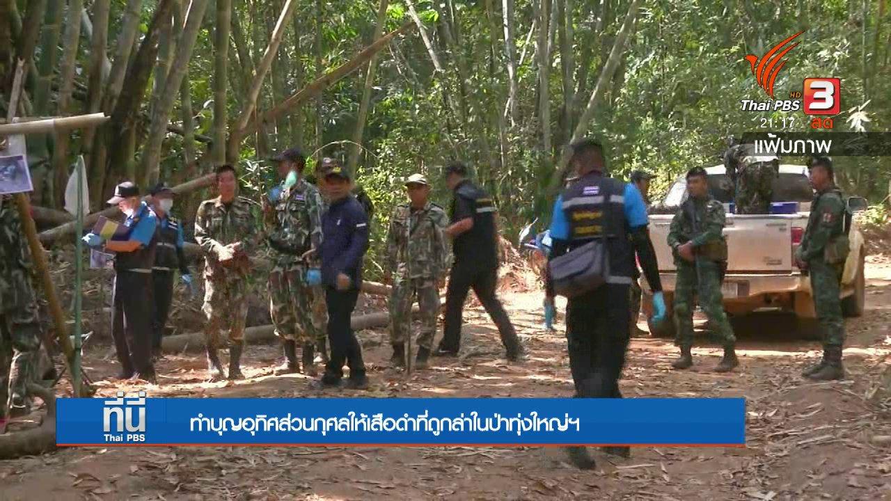ที่นี่ Thai PBS - ทำบุญอุทิศส่วนกุศลให้เสือดำที่ถูกล่าในป่าทุ่งใหญ่ฯ