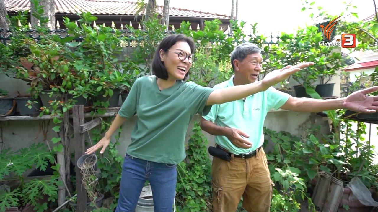 ลุยไม่รู้โรย - สูงวัยไทยแลนด์ : ปลูกผักหน้าบ้าน
