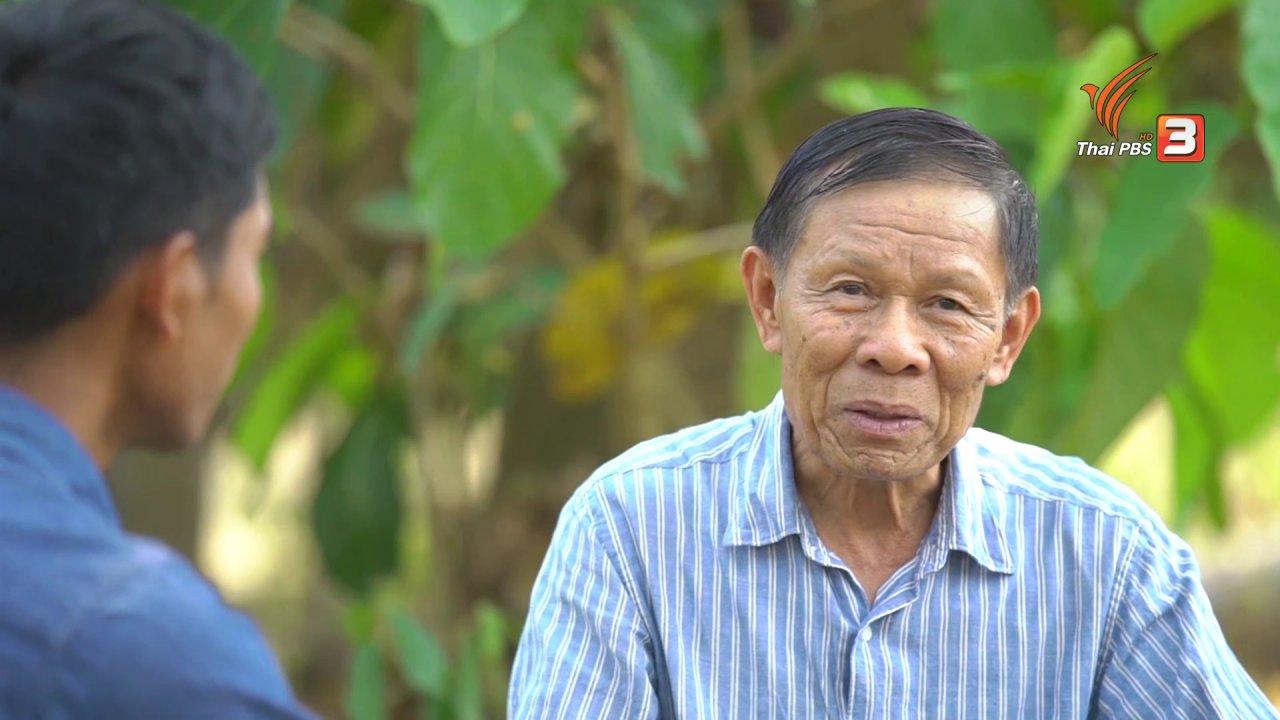 ลุยไม่รู้โรย สูงวัยดี๊ดี - สูงวัยไทยแลนด์ : ผักเชียงดา พืชพิฆาตเบาหวาน