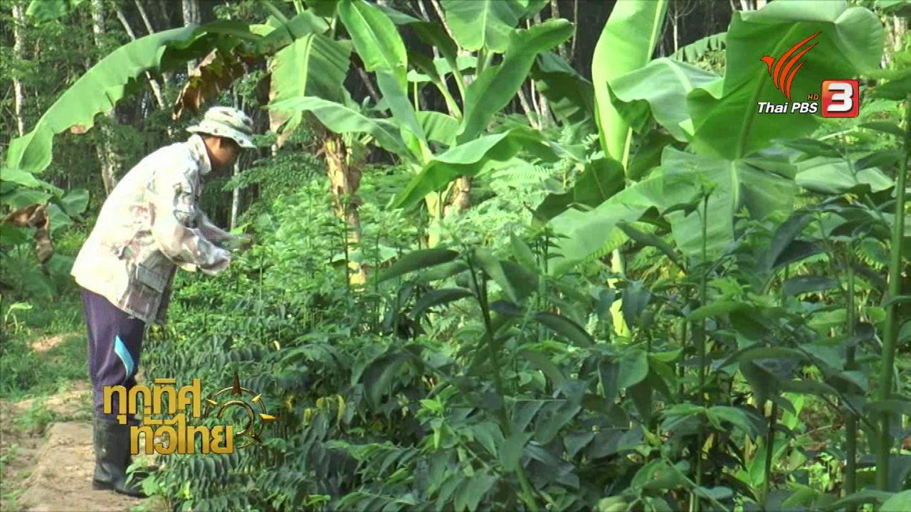 อาชีพทั่วไทย : หนุ่มสะเดาหันมาทำเกษตรพอเพียง