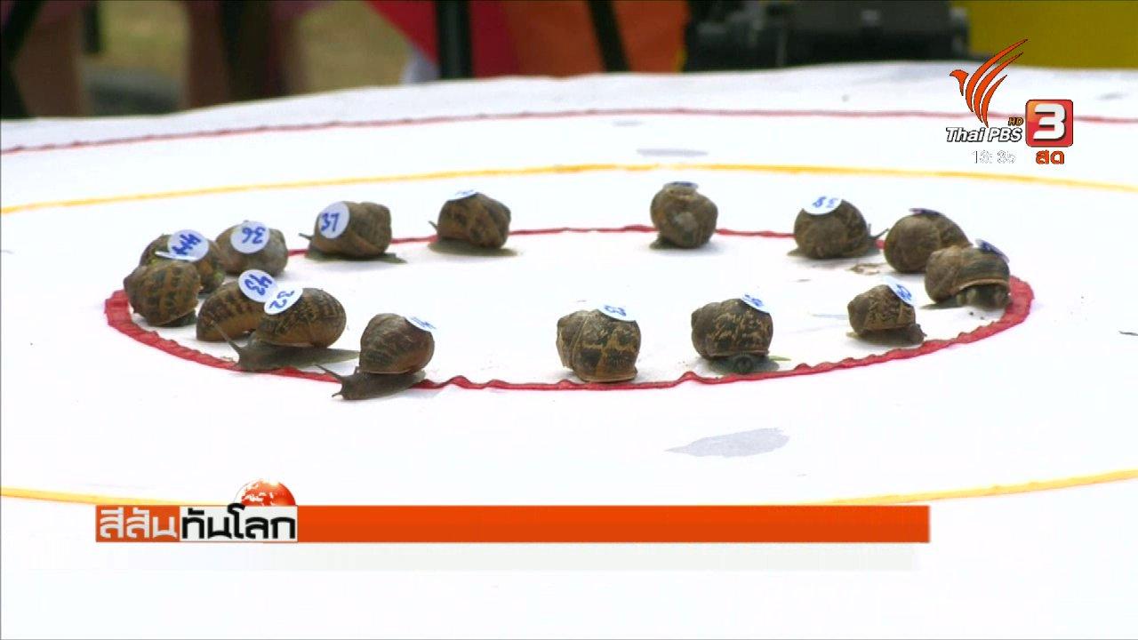 สีสันทันโลก - การแข่งขันวิ่งหอยทากชิงแชมป์โลก