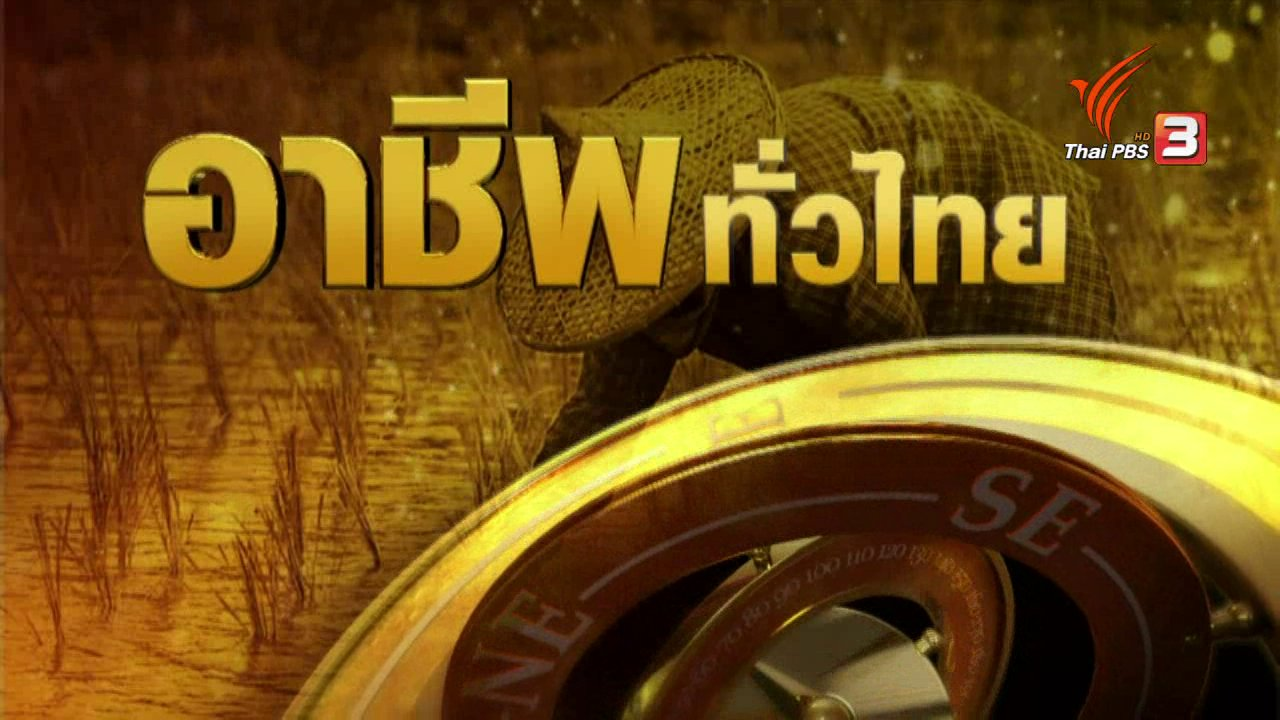 ทุกทิศทั่วไทย - อาชีพทั่วไทย: ชาวสิงห์บุรีปลูกบัวตัดดอกเป็นอาชีพเสริมจากทำนา