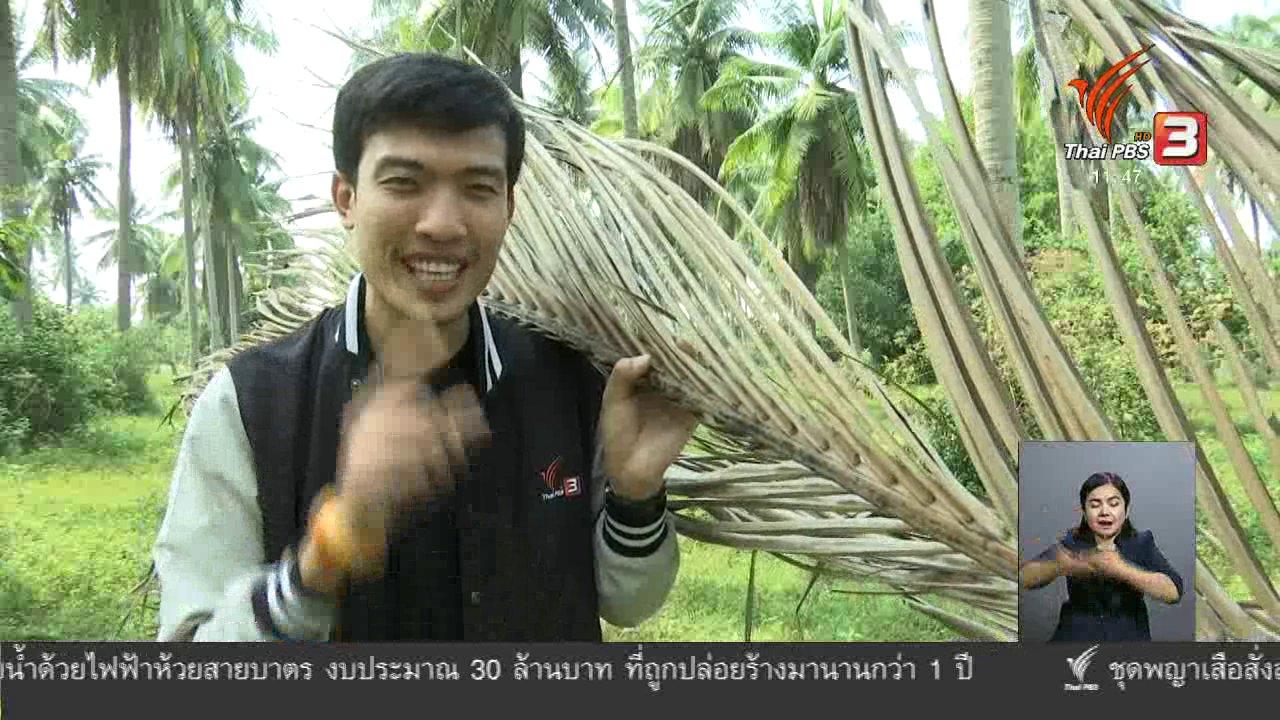 จับตาสถานการณ์ - ตะลุยทั่วไทย : ไม้กวาดทางมะพร้าว