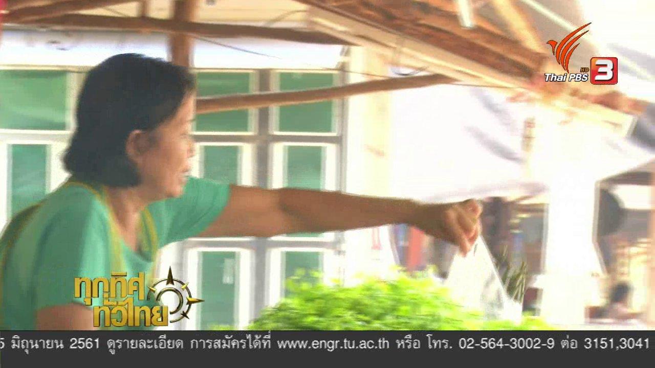 ทุกทิศทั่วไทย - อาชีพทั่วไทย: ปลูกผักหวานป่า