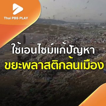 ใช้เอนไซม์แก้ปัญหาขยะพลาสติกล้นเมือง