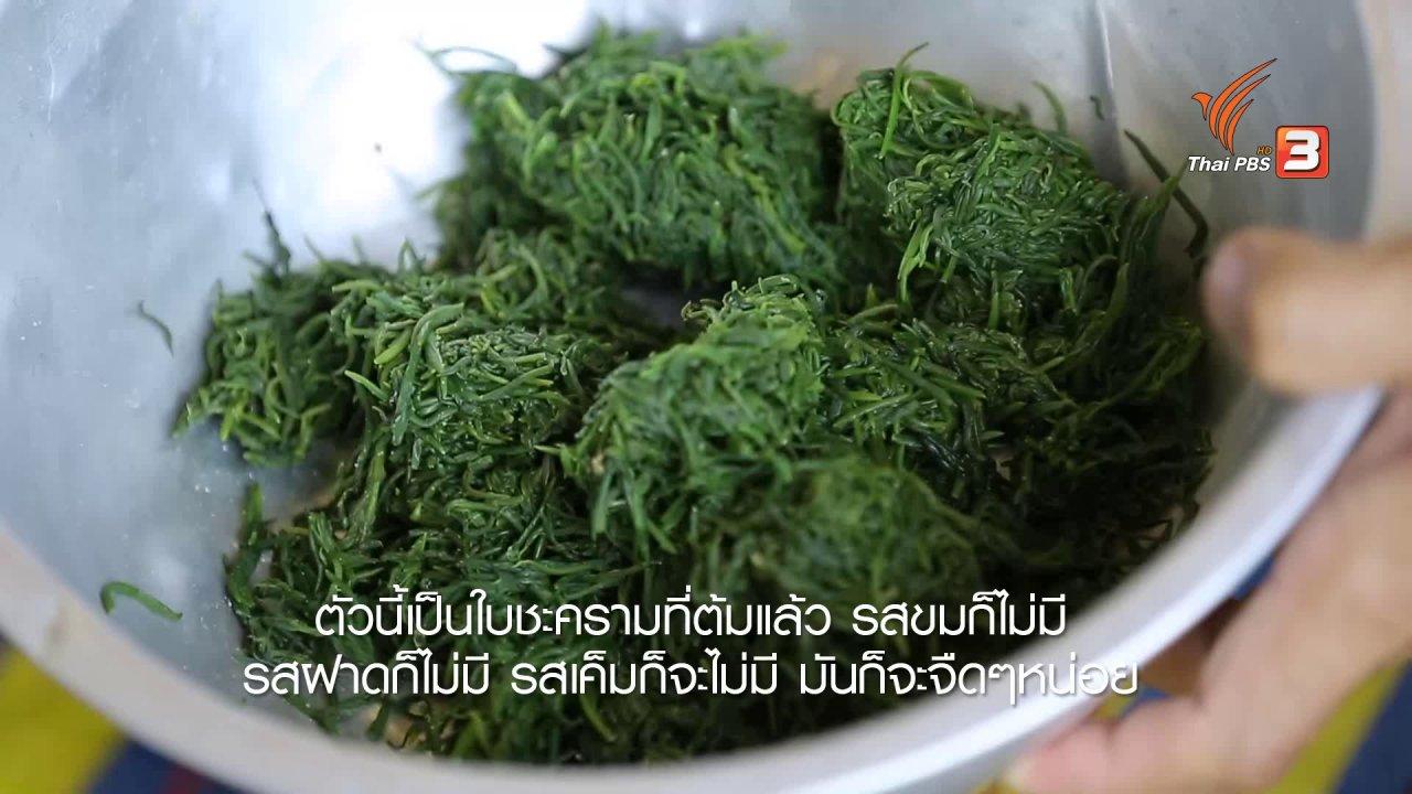 ทั่วถิ่นแดนไทย - เรียนรู้วิถีไทย : ขนมใบชะคราม บ้านต้นลำแพน จ.สมุทรสงคราม