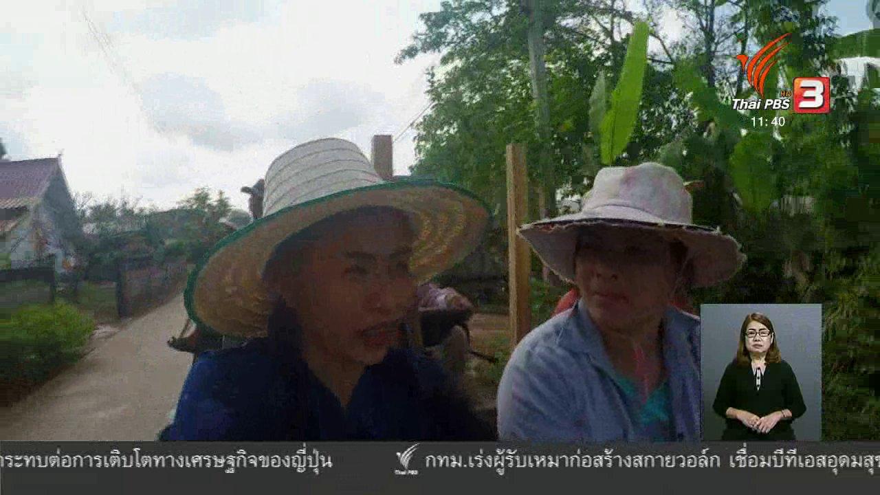 จับตาสถานการณ์ - ตะลุยทั่วไทย : โหลนเทา