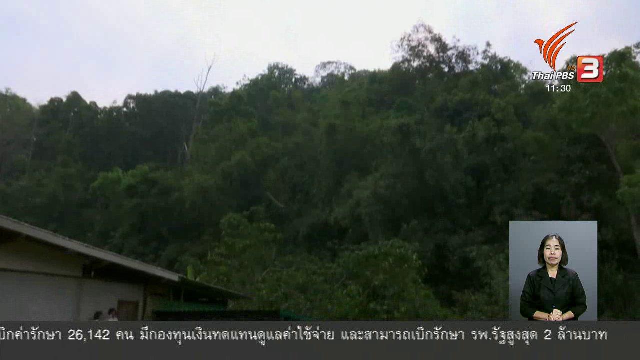 จับตาสถานการณ์ - ตะลุยทั่วไทย : คนอยู่กับป่า