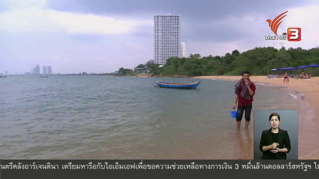 จับตาสถานการณ์ - ตะลุยทั่วไทย : หอยตลับ