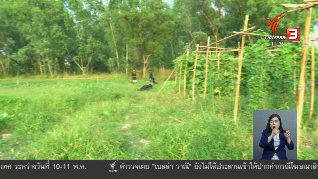 จับตาสถานการณ์ - ตะลุยทั่วไทย : เกษตรธรรมชาติ