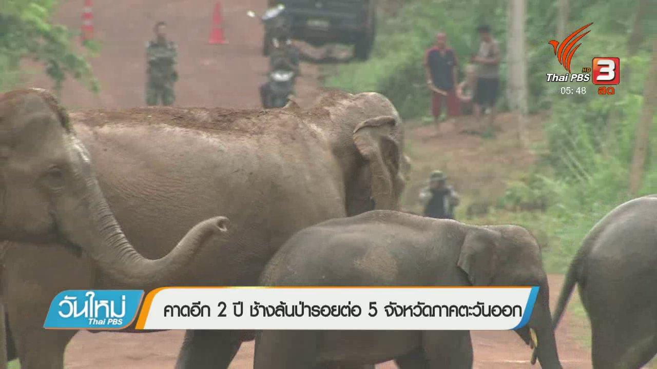 วันใหม่  ไทยพีบีเอส - คาดอีก 2 ปี ช้างล้นป่ารอยต่อ 5 จังหวัดภาคตะวันออก