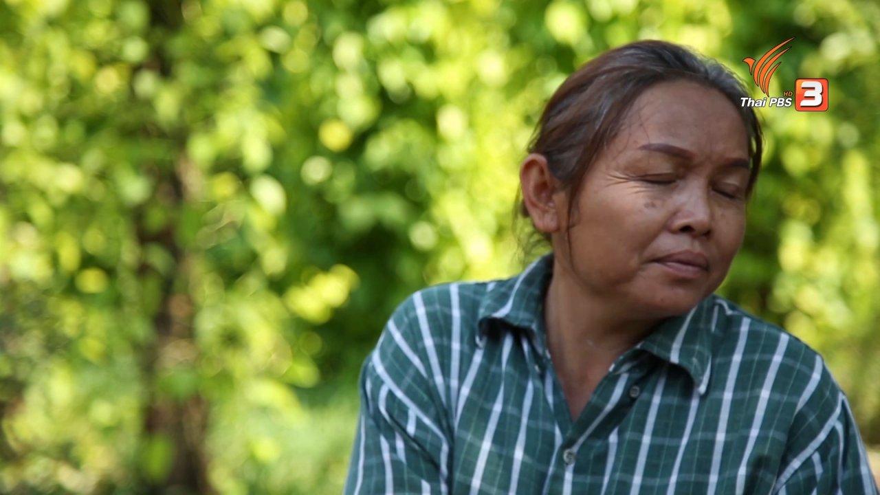 ลุยไม่รู้โรย สูงวัยดี๊ดี - สูงวัยไทยแลนด์ : สูงวัยเจ้าของกิจการสวนพลู