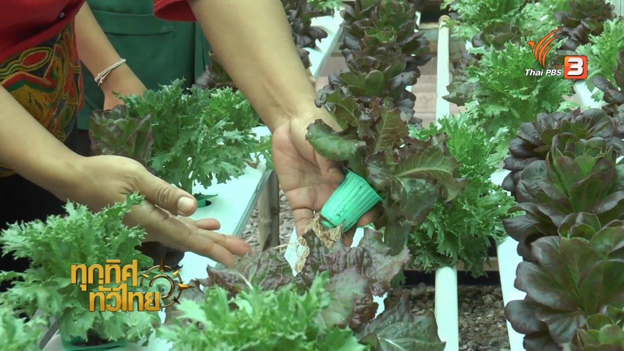 ทุกทิศทั่วไทย - อาชีพทั่วไทย : อาจารย์ มมส ปลูกผักทำอาหารสุขภาพขาย