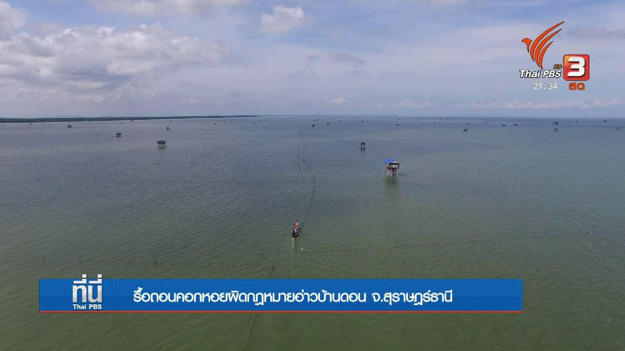 ที่นี่ Thai PBS - รื้อถอนคอกหอยผิดกฎหมาย จ.สุราษฎร์ธานี