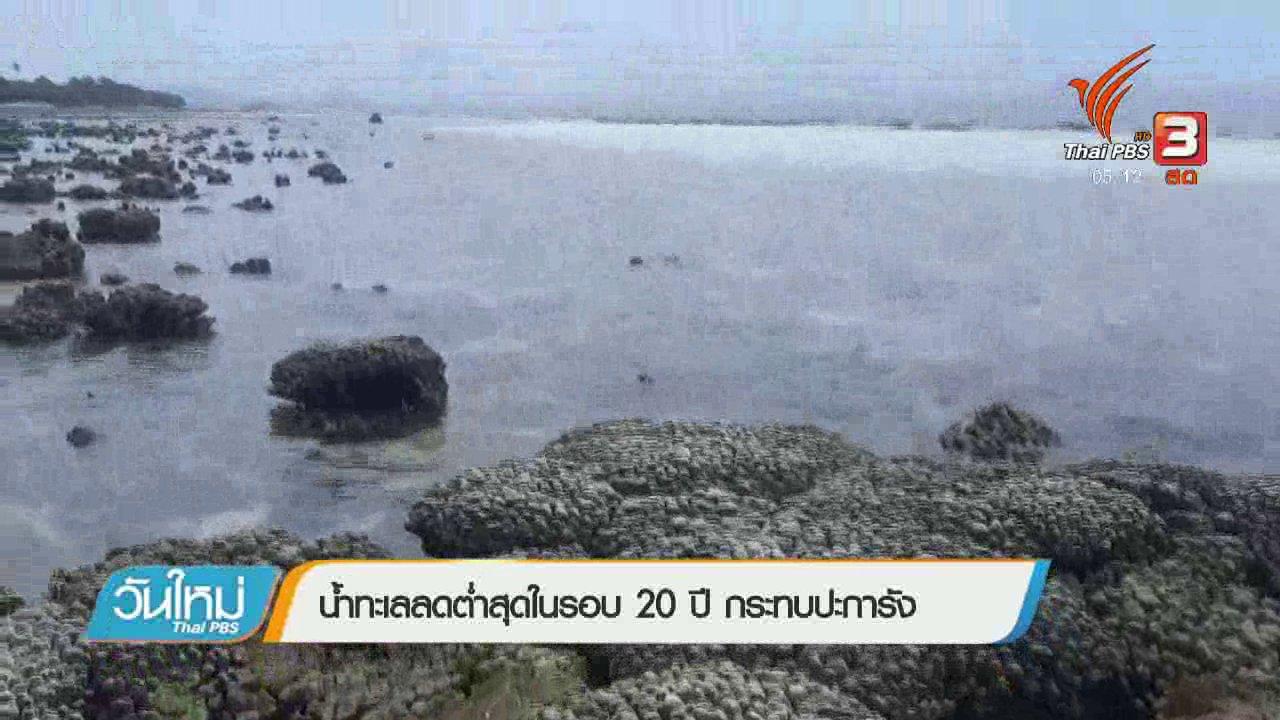 วันใหม่  ไทยพีบีเอส - น้ำทะเลลดต่ำสุดในรอบ 20 ปี กระทบปะการัง