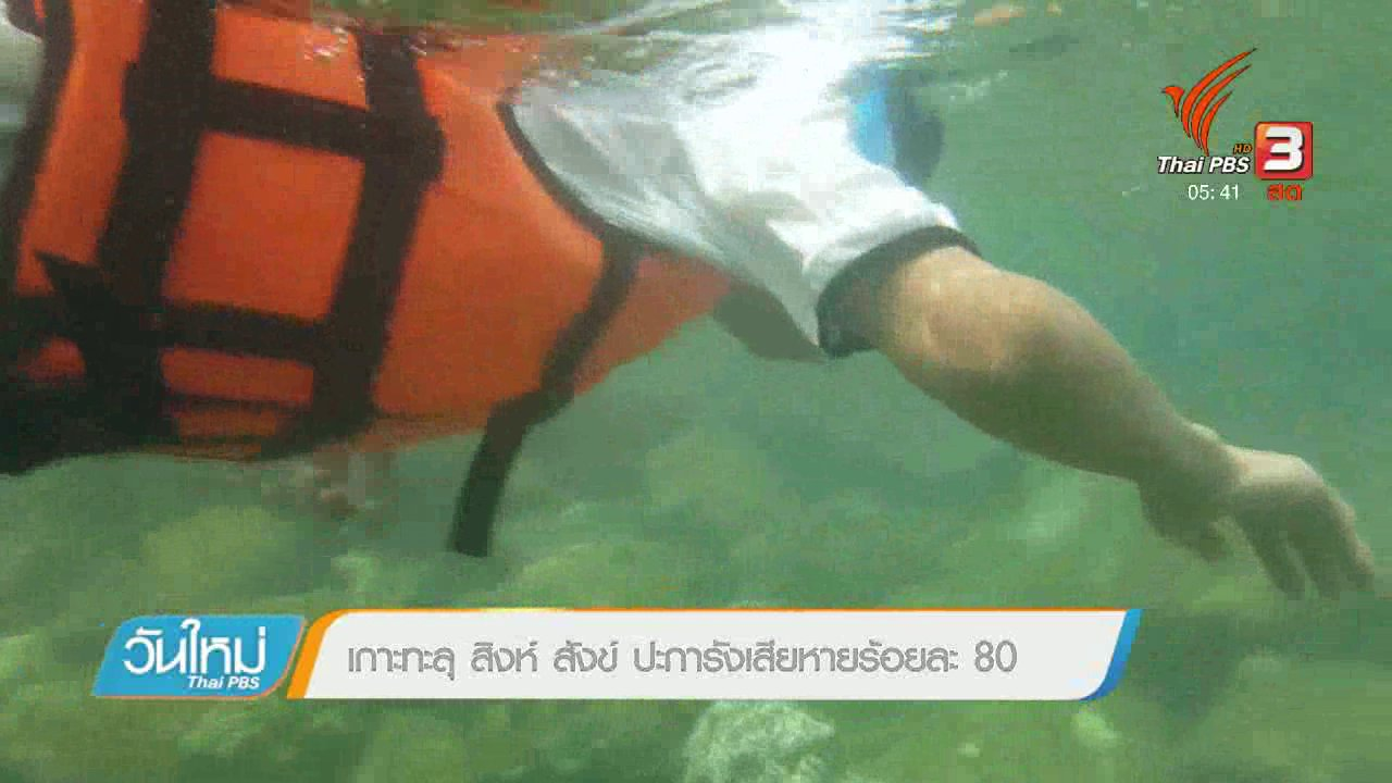 วันใหม่  ไทยพีบีเอส - เกาะทะลุ สิงห์ สังข์ ปะการังเสียหายร้อยละ 80