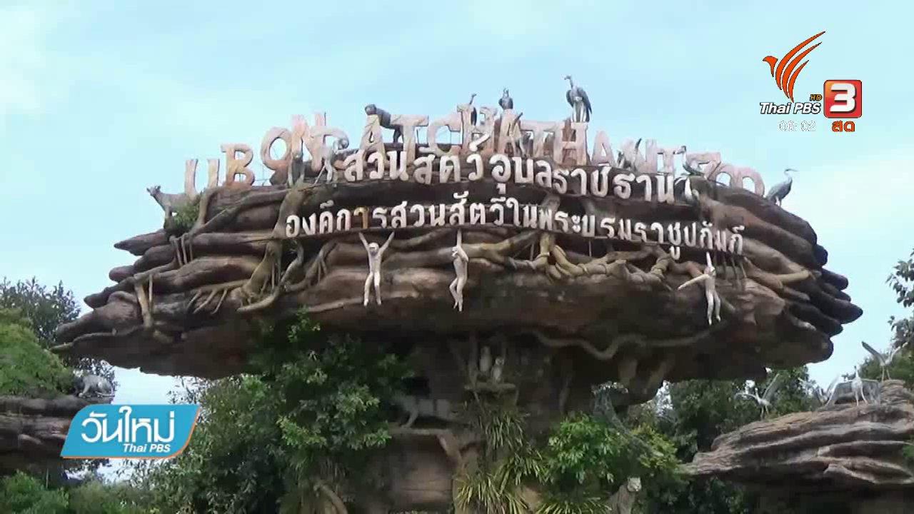 วันใหม่  ไทยพีบีเอส - สวนสัตว์อุบลราชธานีเตรียมรับสัตว์จากสวนสัตว์ดุสิต