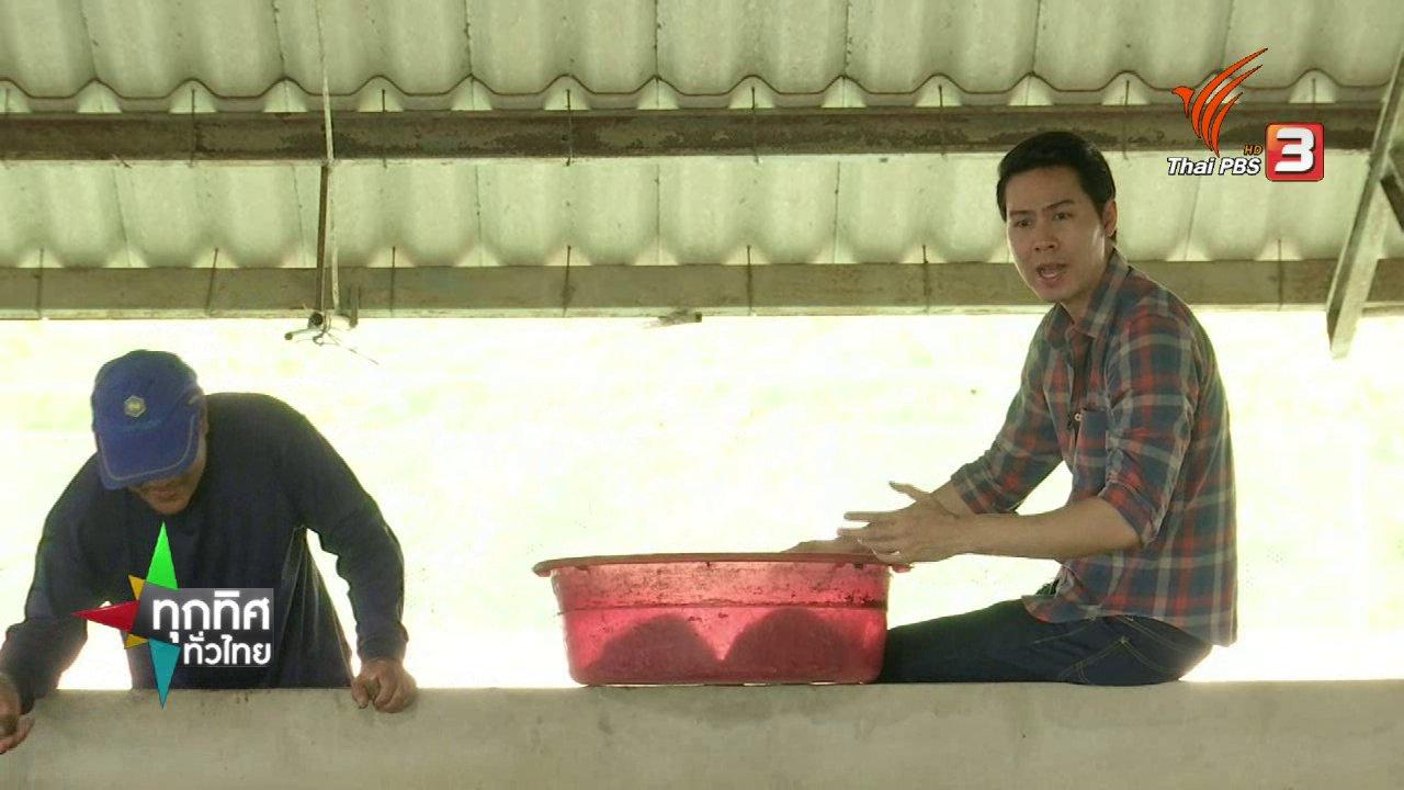 ชุมชนทั่วไทย : เพาะเลี้ยงปลาบึกในบ่อซีเมนต์
