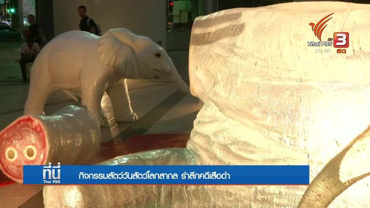 """ที่นี่ Thai PBS - จุดเทียนเชิงสัญลักษณ์ """"เสือดำต้องไม่ตายฟรี"""""""