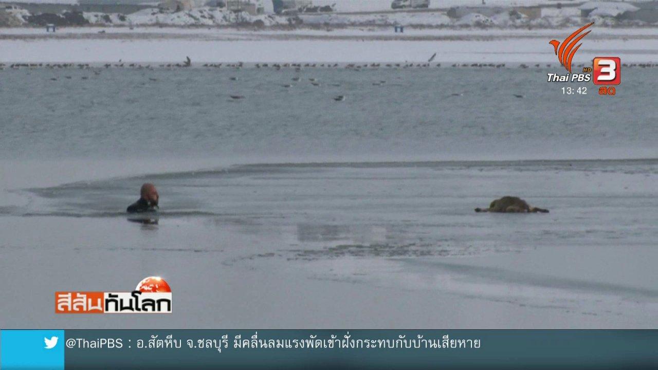 สีสันทันโลก - ฝ่าทะเลสาบน้ำแข็งช่วยชีวิตลูกสุนัข