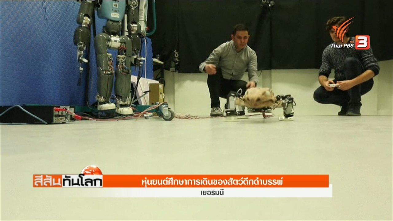 สีสันทันโลก - สร้างหุ่นยนต์ไดโนเสาร์ศึกษาการเดินของสัตว์