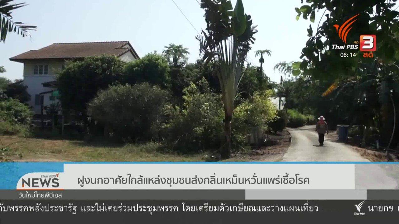 วันใหม่  ไทยพีบีเอส - ฝูงนกอาศัยใกล้แหล่งชุมชนส่งกลิ่นเหม็นหวั่นแพร่เชื้อโรค