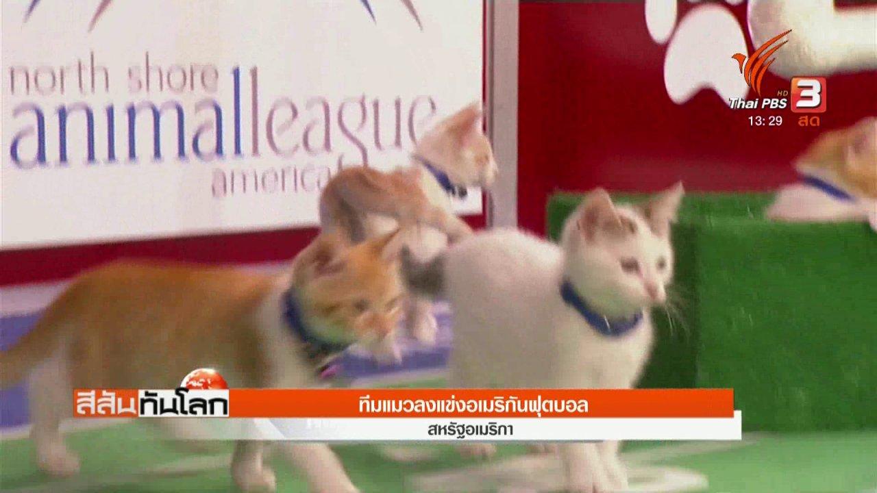 สีสันทันโลก - ทีมแมวลงแข่งอเมริกันฟุตบอล