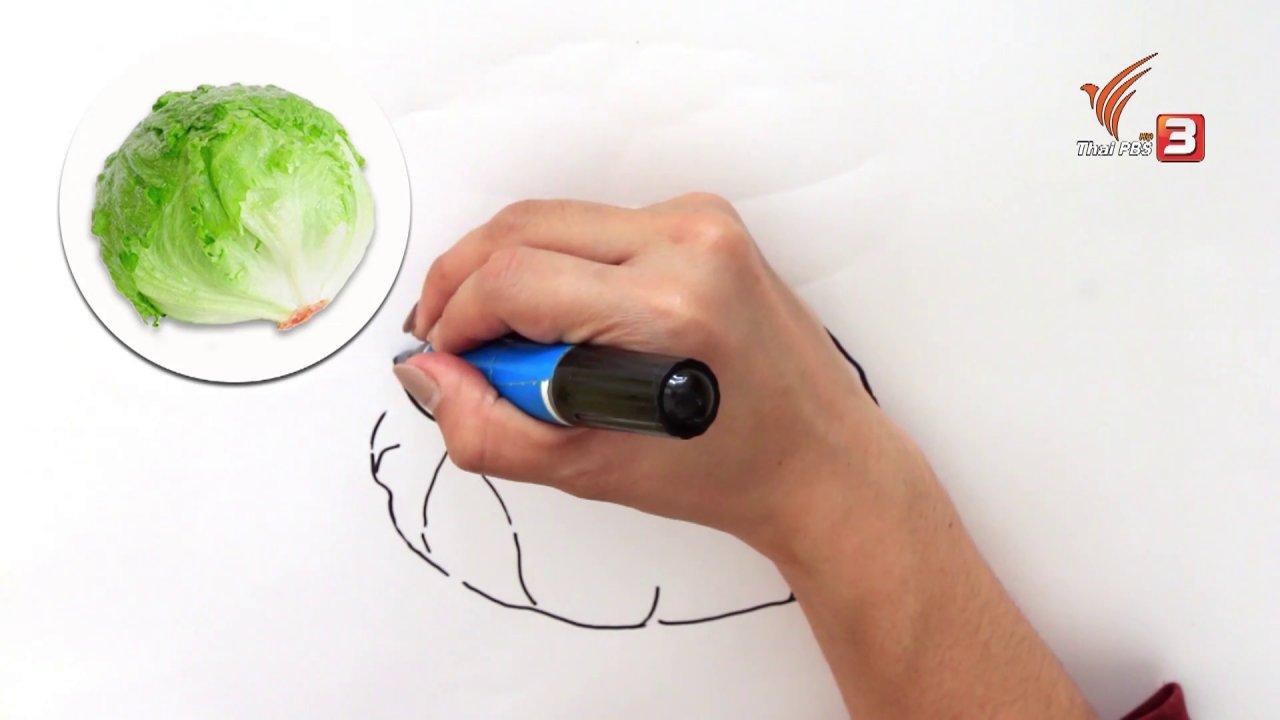 สอนศิลป์ - ผักกาดแก้ว