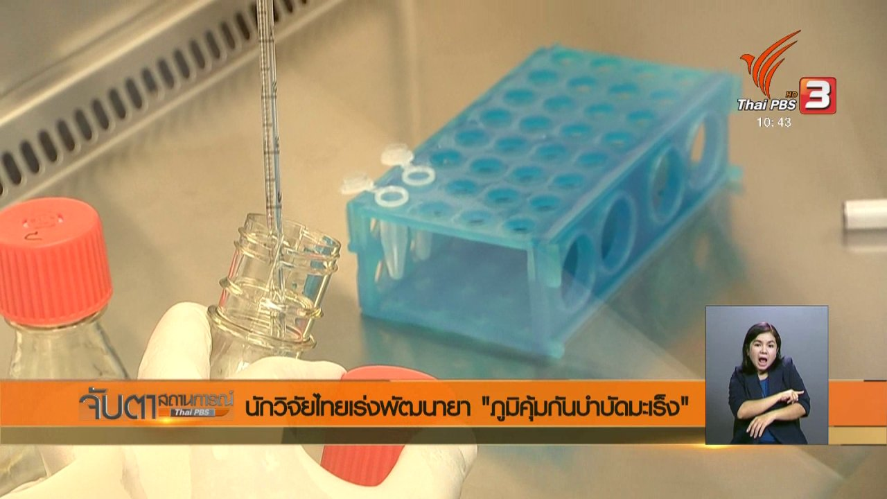 """จับตาสถานการณ์ - นักวิจัยไทยเร่งพัฒนายา """"ภูมิคุ้นกันบำบัดมะเร็ง"""""""