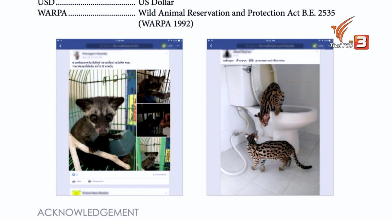 ข่าวเจาะย่อโลก - บริษัทยักใหญ่จับมือปราบการค้าสัตว์ป่าออนไลน์