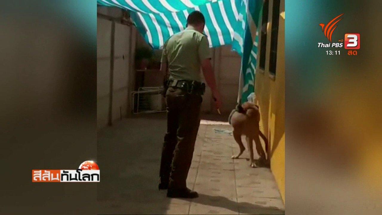 สีสันทันโลก - สุนัขโผกอดตำรวจแทนคำขอบคุณ