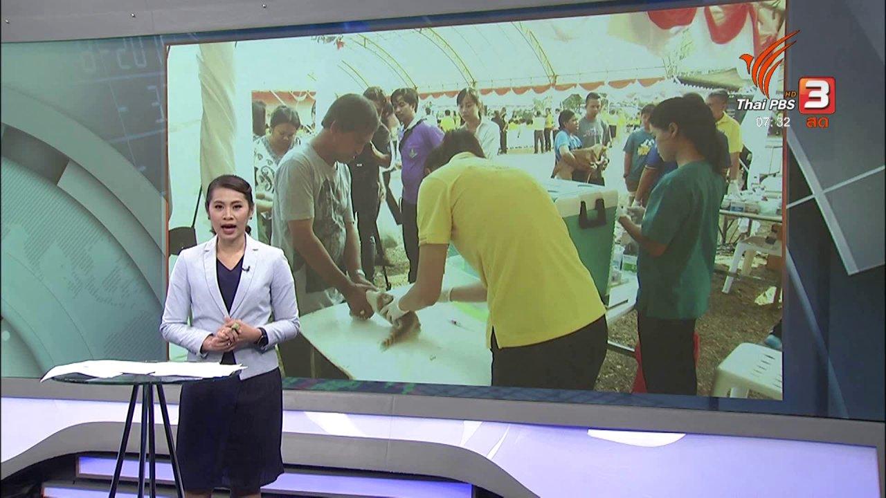วันใหม่  ไทยพีบีเอส - ลงทุนทำกิน : ก.เกษตรฯ ประเมินภัยแล้งกระทบข้าวนาปรัง 2 ล้านไร่