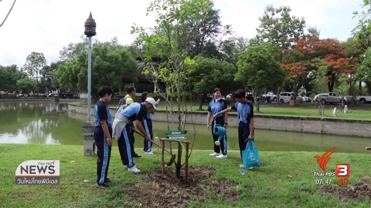 วันใหม่  ไทยพีบีเอส - C-site Report : ชาวเชียงใหม่ร่วมใจปลูกต้นไม้ต้านหมอกควัน