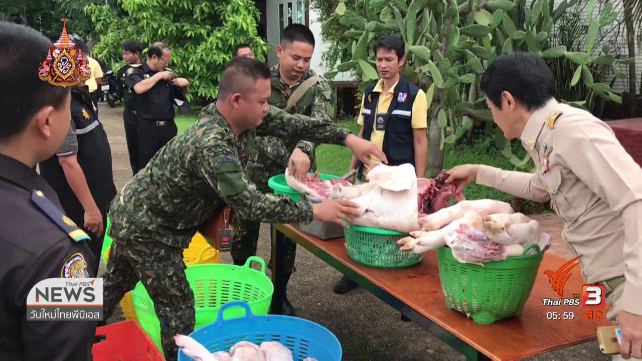 วันใหม่  ไทยพีบีเอส - ทลายโรงฆ่าสัตว์เถื่อน 2 แห่ง จ.หนองคาย