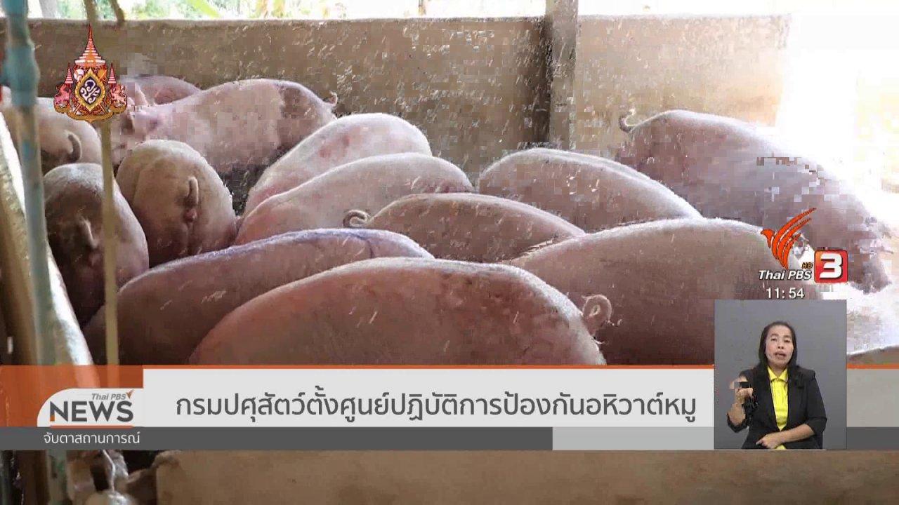 จับตาสถานการณ์ - กรมปศุสัตว์ตั้งศูนย์ปฏิบัติการป้องกันอหิวาต์หมู