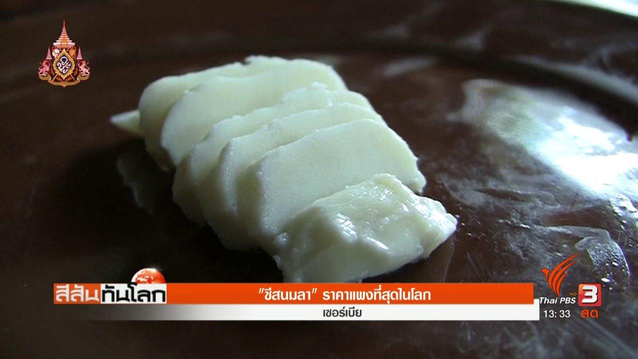 สีสันทันโลก - ชีสนมลา ราคาแพงที่สุดในโลก