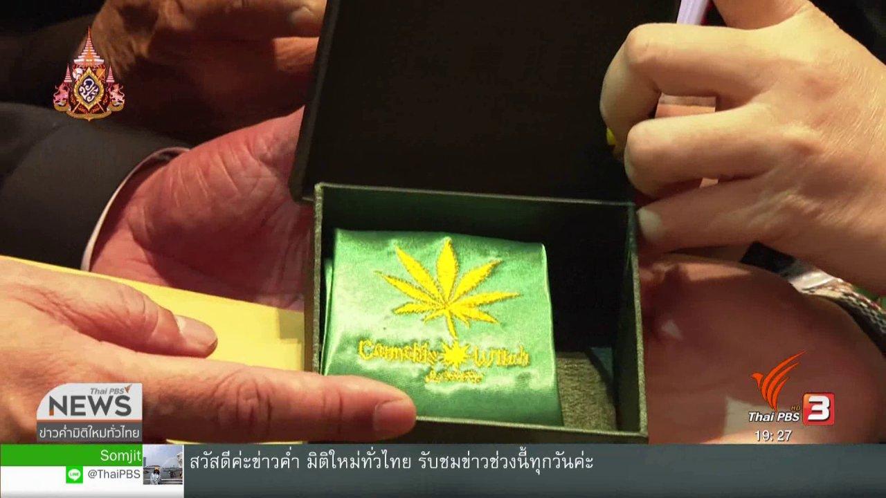 ข่าวค่ำ มิติใหม่ทั่วไทย - ภูมิใจไทยเตรียมเปิดทางปลูกกัญชาครัวเรือนละ 6 ต้น