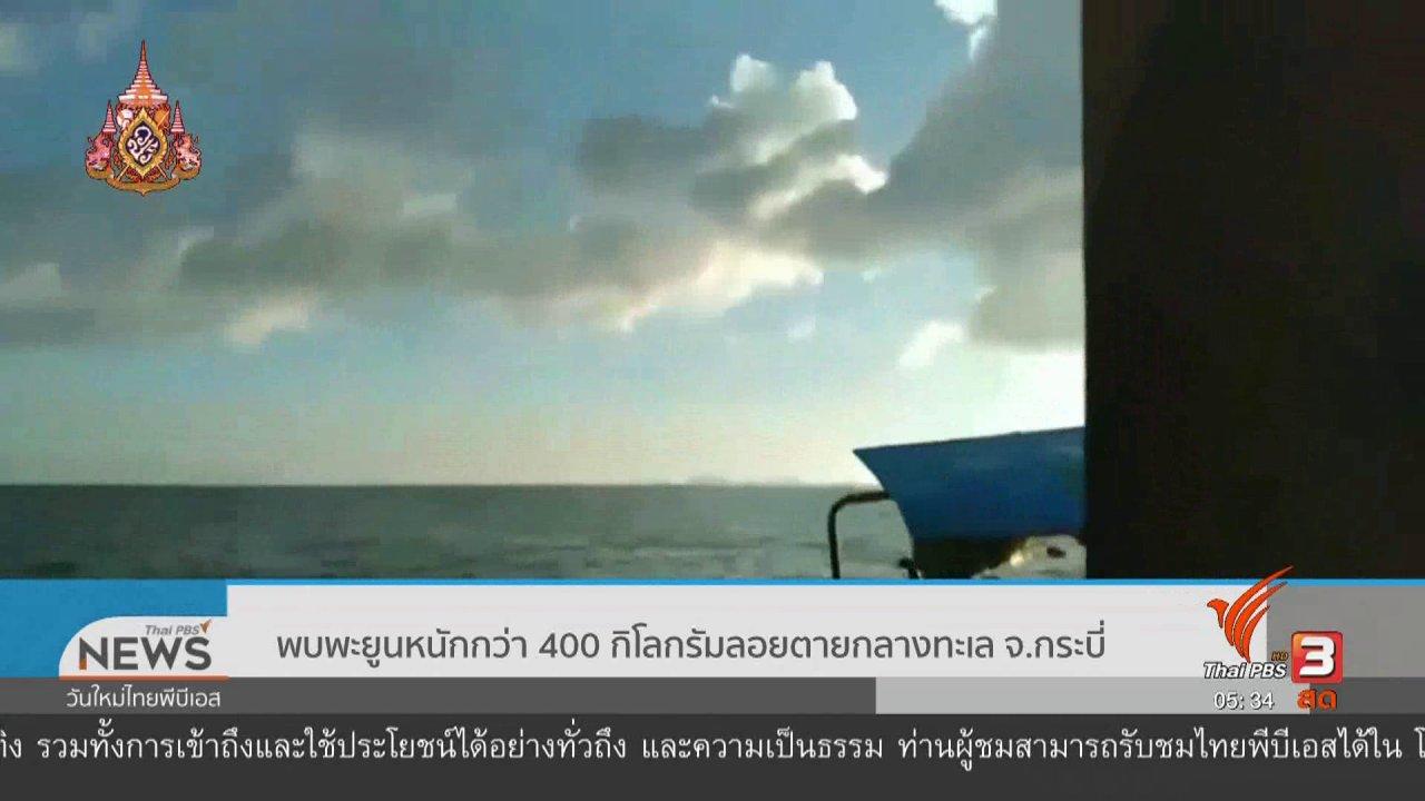 วันใหม่  ไทยพีบีเอส - พบพะยูนหนักกว่า 400 กิโลกรัมลอยตายกลางทะเล จ.กระบี่