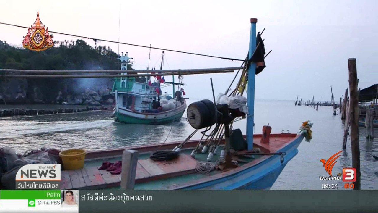 """วันใหม่วาไรตี้ - ประเด็นทางสังคม : """"อนาคตปลาทูไทย"""" ไปต่ออย่างไรไม่ให้สูญพันธุ์"""