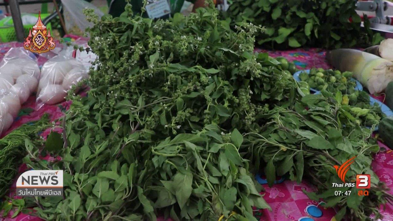 วันใหม่  ไทยพีบีเอส - C-site Report : ฝนแล้งส่งผลสินค้าตลาดเขียว จ.มหาสารคาม