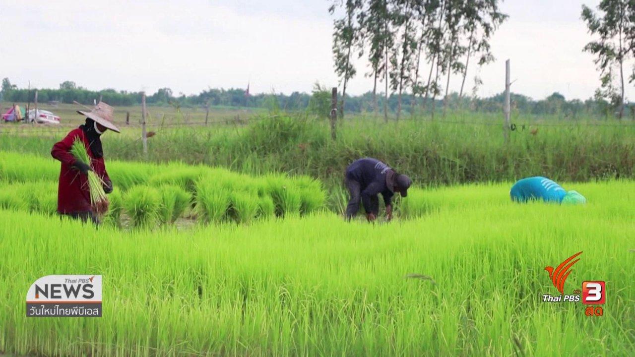 วันใหม่  ไทยพีบีเอส - C-site Report : แล้งนี้ที่เขื่อนลำปาว จ.กาฬสินธุ์