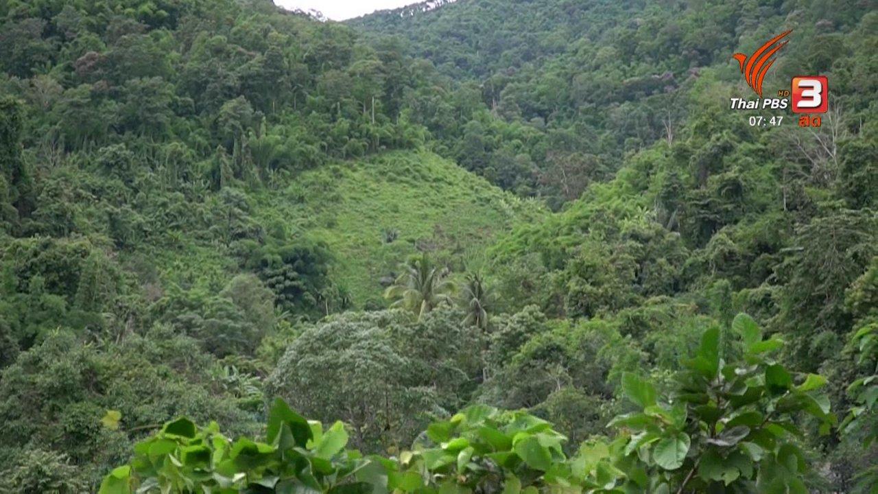วันใหม่  ไทยพีบีเอส - C-site Report : ฟื้นฟูวิถีชีวิตชาวกะเหรี่ยง