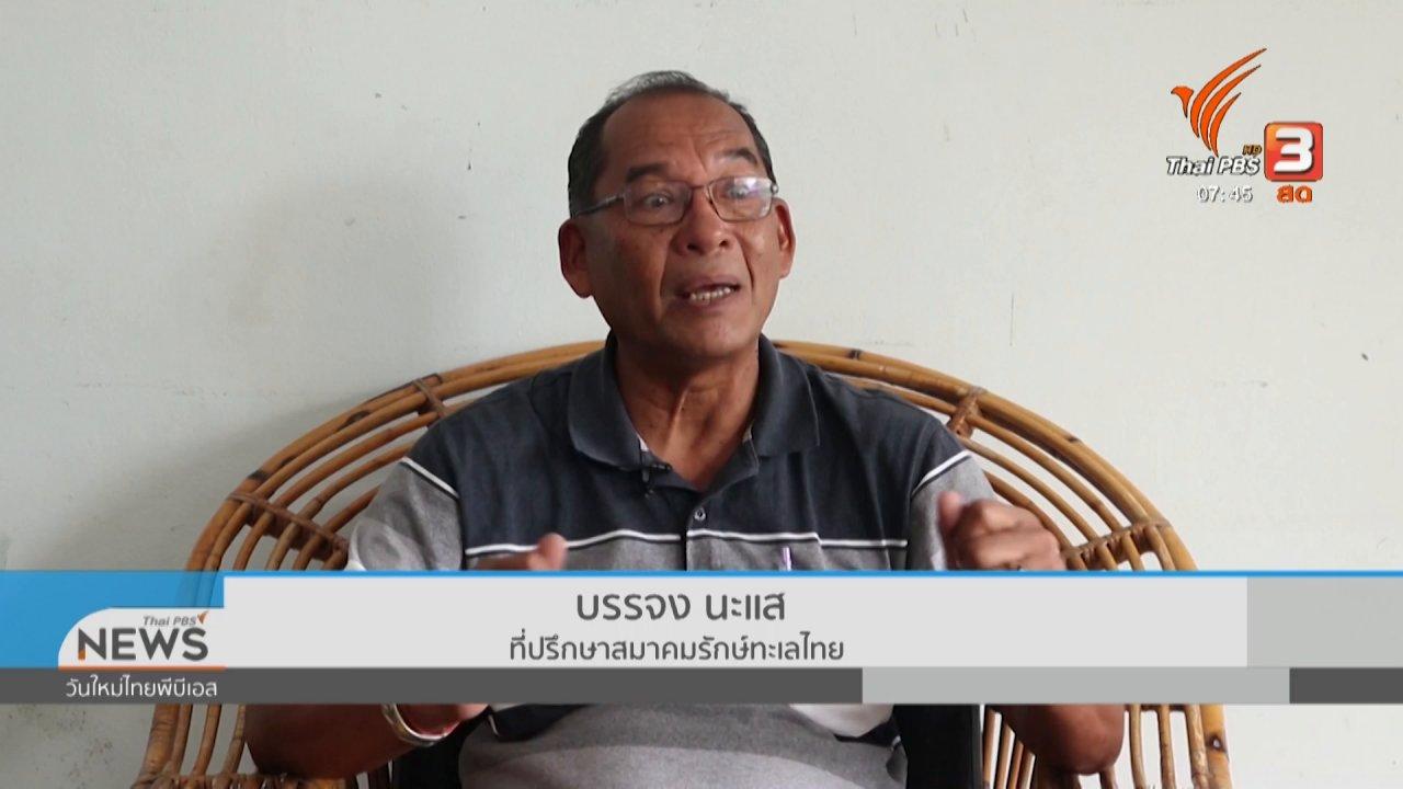 วันใหม่  ไทยพีบีเอส - C-site Report : ปลาทูไทย สะท้อนสุขภาพทะเล