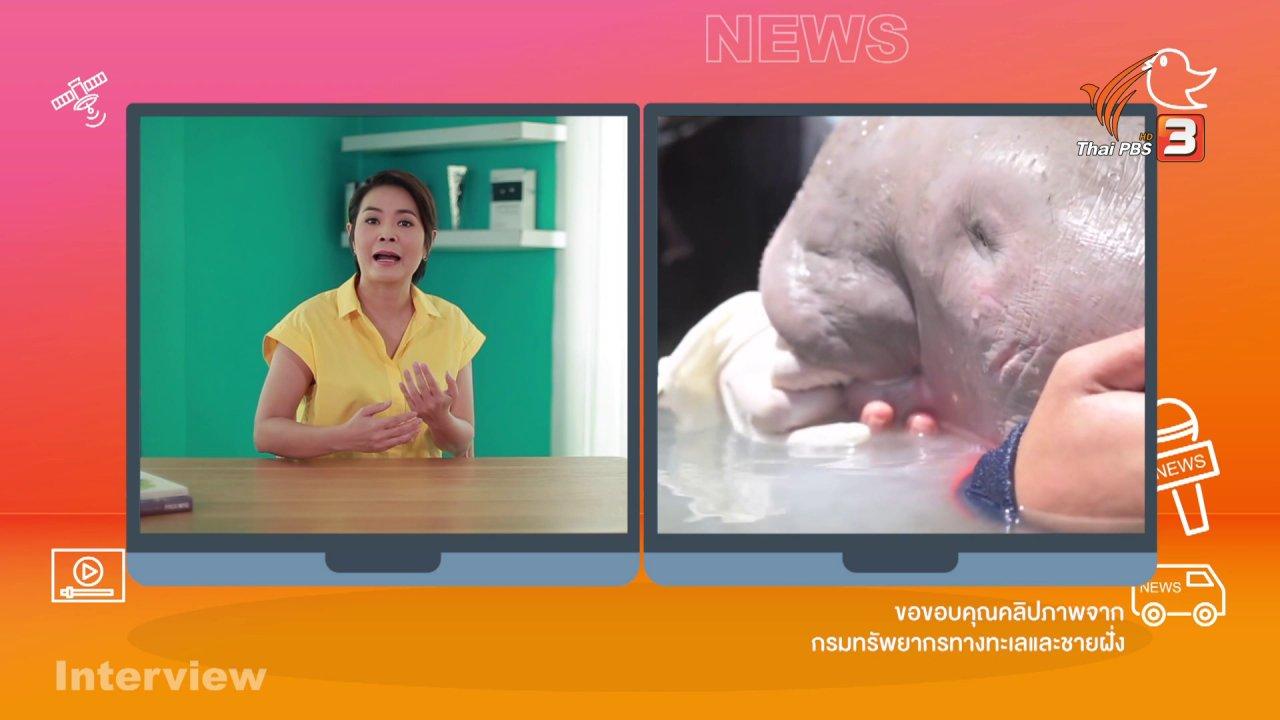 คิดส์ทันข่าว - คิดส์ทันข่าว กับ ดร.จิตรา : ชวนดูคลิปสัตว์น่ารัก ๆ จากโซเชียลมีเดีย